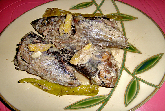 ginataang tulingan or skipjack tuna with coconut milk